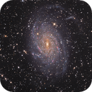The Great NGC6744,                                Patrick Dufour