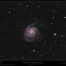 Messier 101 - Pinwheel Galaxy,                                Frank Schmitz