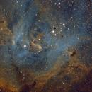 Running Chicken Nebula SHO,                                S. Stirling