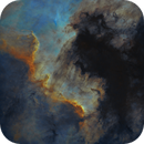 Starless Cygnus Wall,                                Bart Delsaert