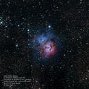 M20 Trifid Nebula,                                Robert Van Vugt