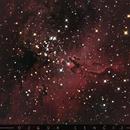 M16 Eagle Nebula,                                Özgür CENGİZ