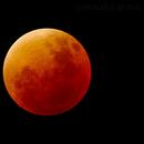 Mond Eclipse,                                Bruno