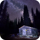 Canfield Cabin,                                Michael Lohr