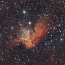The Wizard Nebula,                                Vencislav Krumov