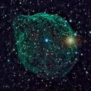 Dolphin Nebula (Sh2-308),                                KiwiAstro