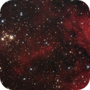 NGC6910 - Cygnus X,                                Ivaldo Cervini