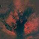 Flame Nebula,                                Marco