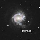 Supernova 2020jfo in M61,                                Giovanni Calapai
