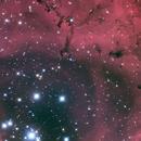 NGC 2237 HaLRGB,                                Ron Stanley