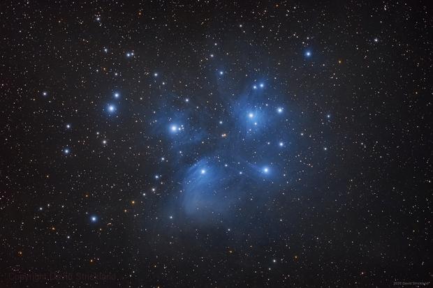 Pleiades Open Cluster,                                stricnine
