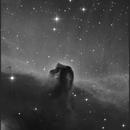 Horsehead,                                  sky-watcher (johny)