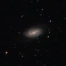 NGC 2903 Galaxia espiral (Powermate2X),                                Astroneck