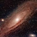 M31,                                Rex