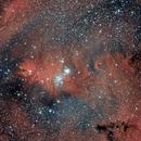 Cone Nebula (Optolong l-eNhance),                                Paolo Demaria