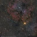 IC1396 Elephant Trunk Nebula,                    Christophe Perroud