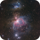 M42 Great Orion Nebula (near infrared),                    Toshiya Arai