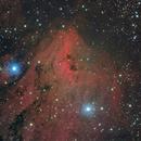 Pelican Nebula,                                Chuck Faranda