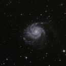 M101,                                Michi Scheidegger