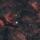 Cygnus   Sadr and IC1318,                                DougSch