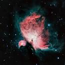 M42 - Orion Nebula,                                Julio Cruz