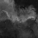 "Cygnus Wall NGC 7000 in Ha (10"" F/4 Newt),                                llolson1"