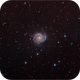 M74 The Phantom Galaxy,                                Randal Healey