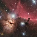 IC434 HorseHead Nebula Bonus: SCT Reflection!,                                TimothyTim