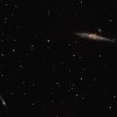 NGC 4631 (galaxie de la Baleine) et NGC 4656 (galaxie de la Crosse),                                Philastro