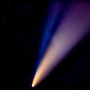 Comet Neowise,                                Astromjk11