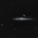 NGC4631 Whale galaxy,                                Lukasz Socha