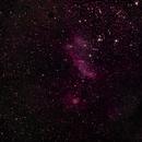Prawn Nebula,                                Tony Kim