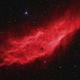 NGC 1499, California Nebula,                                Ruben Barbosa