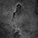 Elephant Trunk Nebula in hydrogen alpha,                                Stephen Jennette