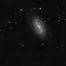 NGC2903,                                Xavier V