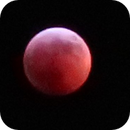 Blood Moon - Monday Jan 21 2019- 2:44am,                                Winton G