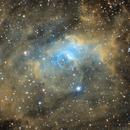 NGC7635 Buble Bebula,                                Philippe Brunasso
