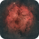 IC1396 - The Elephant's Trunk wide field of view,                                Jérémie