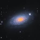 The  Sunflower Galaxy (M63),                                John Sojka jr