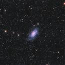 NGC2403 dans la Girafe,                                Georges