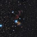 Horsehead and Flame Nebula Untracked,                                Olga W. Ismael