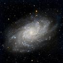 M33,                                Cybermayberry