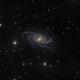 NGC2336 IC467,                                iva