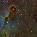 IC1396,                                Minseok.Chang