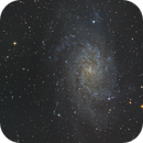 M33 Galaxie du Triangle,                                Francois Tasse