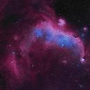 The Seagull Nebula in Ha-OIII,                                Jim Lindelien
