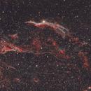 NGC 6960 - Veil Nebula,                                Dan Gallo