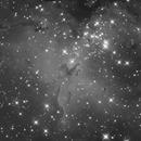 M16 Eagle Nebula,                                Ryo Wan