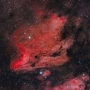 The Pelican Nebula - IC 5070,                                JohnAdastra