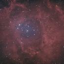 Rosette Nebula,                                Mark Minor